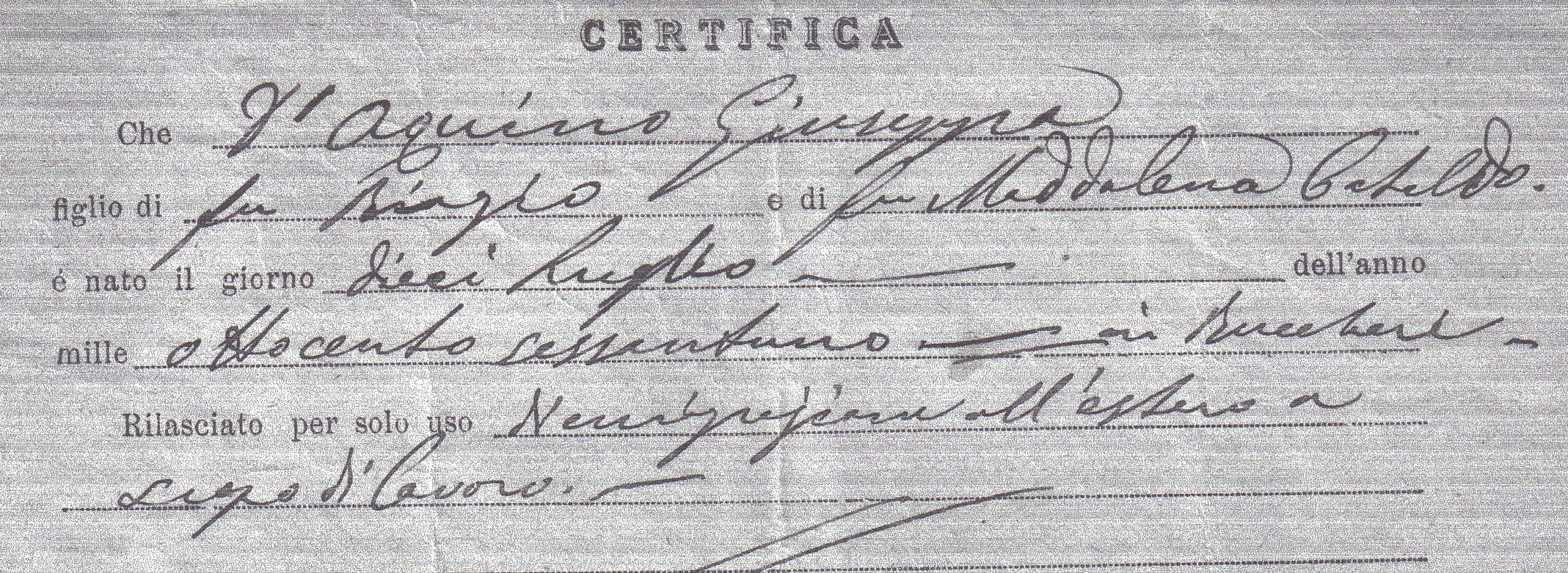 d'aquino birth record.jpg